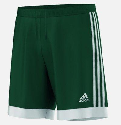 Spodenki Adidas Tastigo 15